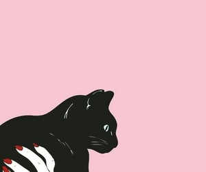 cat, pink, and black image