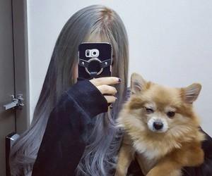 dog, girl, and ulzzang image