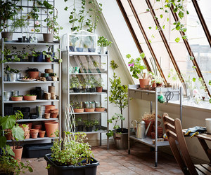 gardening, greenhouse, and home image