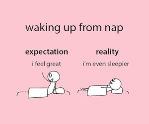background, meme, and nap image