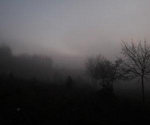 fog, foggy, and mistery image