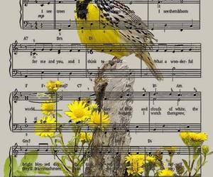 art, sheet music, and yellow image