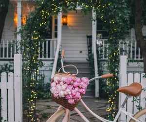 flowers, bike, and house image