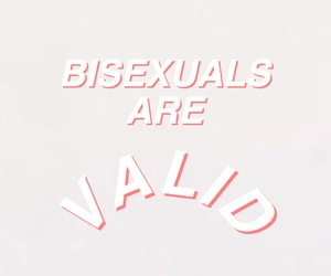 bisexual, valid, and lgbt image