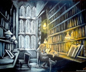 books, cat, and harry potter image