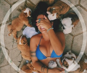 carefree, green, and puppy image