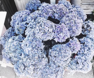 bloom, blue, and bouquet image