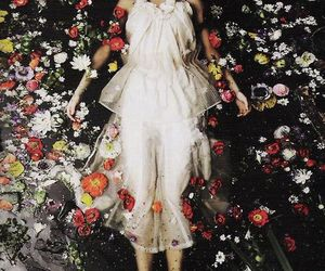 fashion, petals, and photography image
