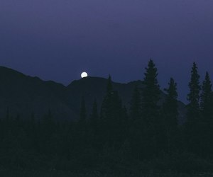 night, moon, and nature image