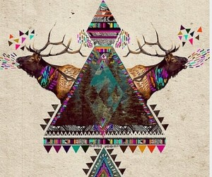 wallpaper, hipster, and animal image