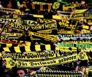 fans, bvb09, and borusse image