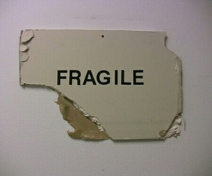 fragile, grunge, and aesthetic image