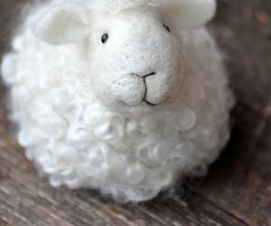 white, cute, and sheap image