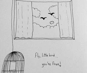 bird, birds, and clouds image