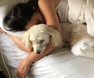 dog and bea miller image