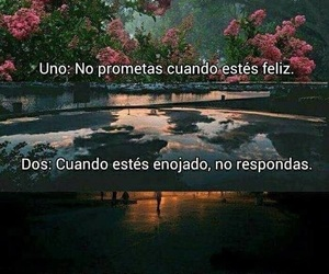 frases, rules, and quotes image