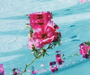 agua, flores, and flowers image
