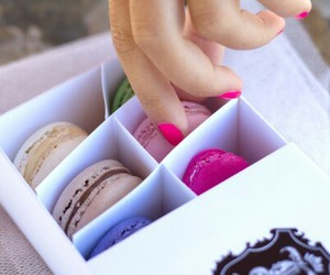 colourful, dessert, and Cookies image