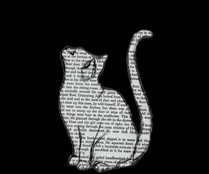 book, cat, and words image