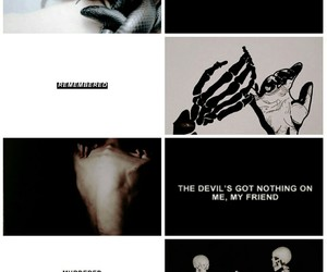 aesthetic, moodboard, and zodiac image