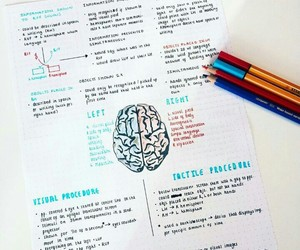 notes and school image