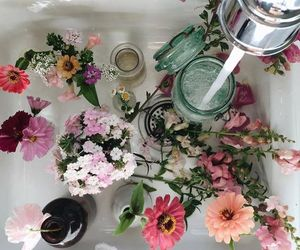 flowers, water, and aesthetic image