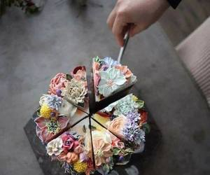 cake, porn, and flowers image