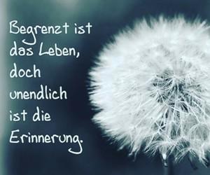 deutsch, life, and zitat image