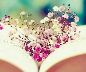 beutiful, books, and flowers image