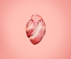 heart, minimalist, and pink image