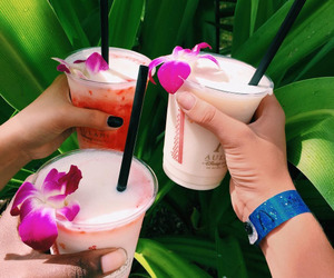 drink and tropical image