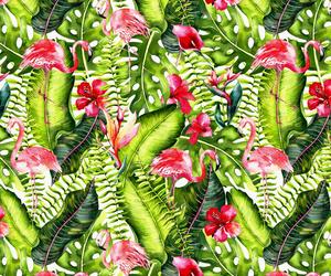 Aloha, animal, and bird image