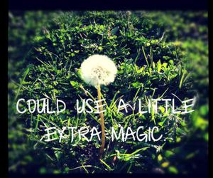 magic, photography, and love image