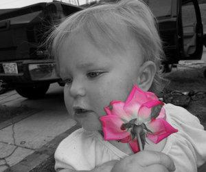pink, color splash, and flower image