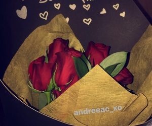 boyfriend, roses, and cute image