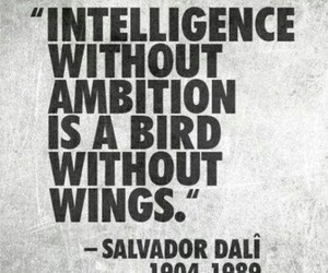 quotes, intelligence, and ambition image
