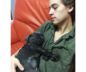 bae, boy, and cole sprouse image