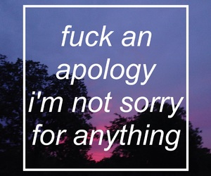quote, grunge, and sorry image