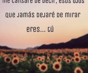 amor, 🌙, and frases image