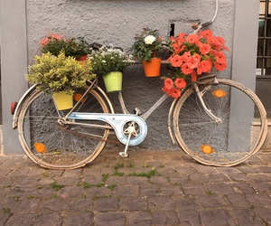 art, bicycle, and bicycles image