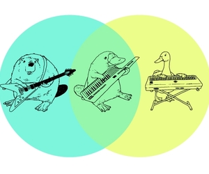 beaver, illustration, and duck image