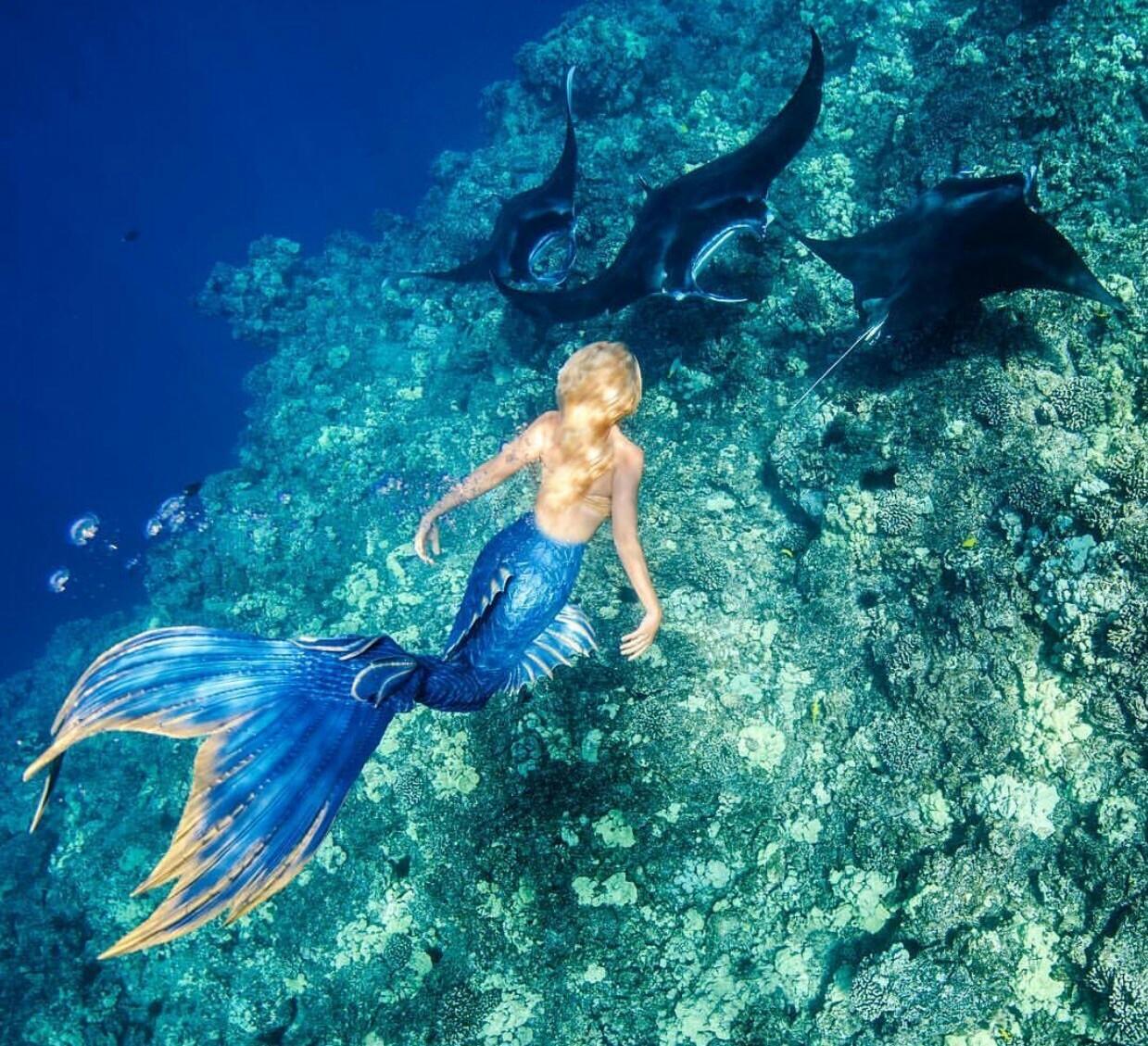 движущиеся картинки живых настоящих русалок можете