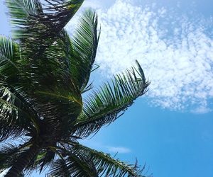 blue, travel, and tropical image