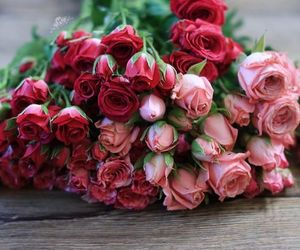 flowers, beautiful, and rose image