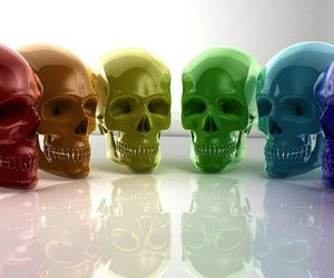 skull, colorful, and colors image