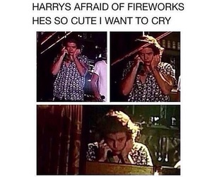 Harry Styles, one direction, and fireworks image