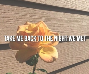 Lyrics, quotes, and rose image
