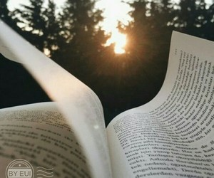 book, sun, and nature image