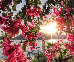 flowers, travel, and summer image