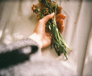 vintage, flowers, and hand image